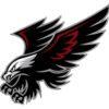 Black Hawk Security & Investigations